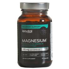 Leovital Magnesium Kapsule 90/1