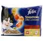 Felix Fantastic Sensations Hrana za mačke 4x100 g