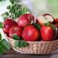 Jabuka crvena 2 kg