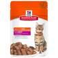Hill's Adult 1-6 Chunks&Gravy Hrana za mačke govedina 85 g