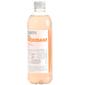 Vitamin Well Antioxidant Niskoenergetsko piće okus breskva 500 ml