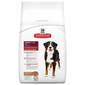 Hill's Adult Large Breed Hrana za pse janjetina i riža 12 kg