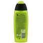 Fa sport energy boost gel za tuširanje 250 ml