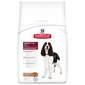 Hill's Adult 1-6 Hrana za pse janjetina i riža 12 kg