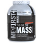 Polleo Sport The One:One Mass Gainer Prah chocolate madness 3,62 kg
